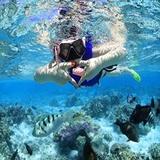 分界洲岛潜水冲浪一日游